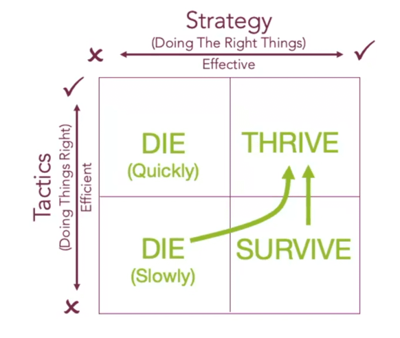 Strategy And Tactics Live In The Thrive Box